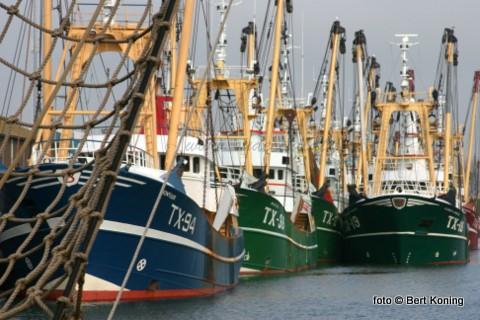 De Texelse visservloot in het weekeinde in de thuishaven.