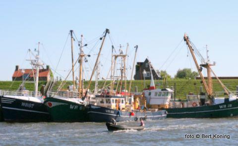 Het is al jaren traditie in deze vakantieperiode dat een deel van de Wieringer kottervloot met familie naar Texel komt. Afgemeerd in de zuiderhaven geniet men hier van het mooie weer.