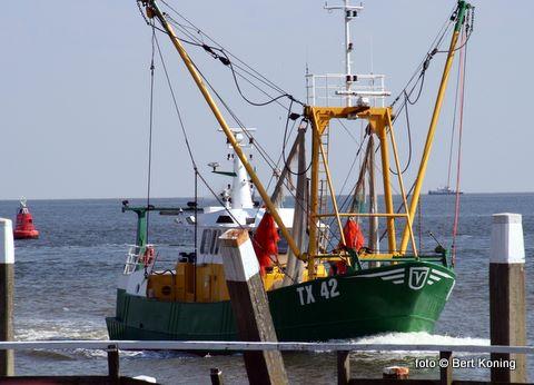 Afgelopen nacht kreeg de TX 42 van Rick Koning en Eric Boersen ter hoogte van Paal 18 een net in de schroef en raakte er stuurloos aan de grond. Met hulp van de KNRM De Koog met de Zalm,  de Joke Dijkstra uit Den Helder en de TX 21 lukte het om de garnalenkotter weer vlot te krijgen. De Res Nova is vervolgens naar Den Helder gesleept. De mogelijke schade is nog onbekend.