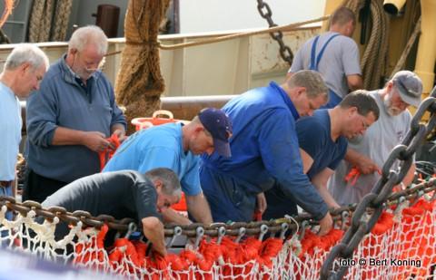 Op de 'Biem Jan' van de gebroeders van der Vis uit Oosterend maken 'vele handen licht werk' op de vrijdagmorgen.