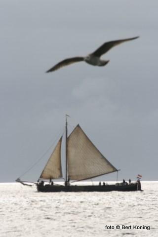 Ondanks de drukte van het toeristenseizoen op Texel geniet deze bemanning van de rust het wad even buiten de haven,