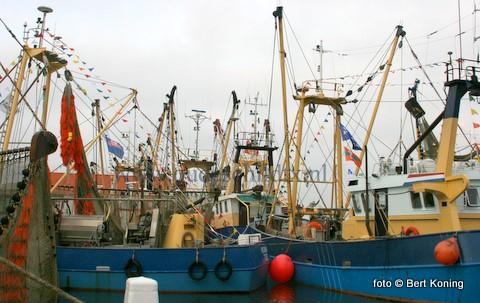 Met de noorderhaven 'ouderwets' vol met de versierde euorokotters van de vloot bereid men zich al voor op een geslaagd SkilderVIStijn.