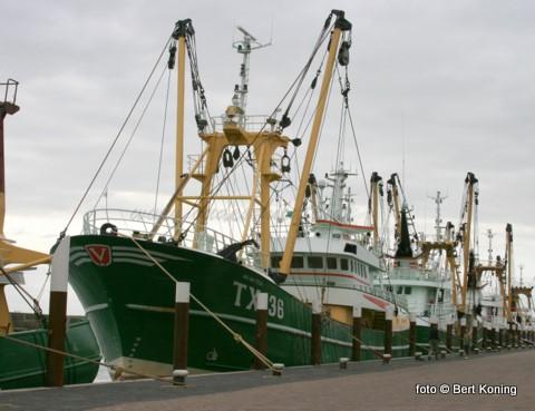 Afgelopen week is de 'Jan van Toon' van de familie van der Vis uit Oosterend vertrokken naar Stellendam. Bij Maaskant Shipyards zal de kotter de komende twee weken worden ingericht voor de visserij met de vernieuwde puls-wing. Een combinatie van de Sumwing, waar men al met succes mee viste en het pulsuig, waar de TX 68 momenteel me is uitgerust.