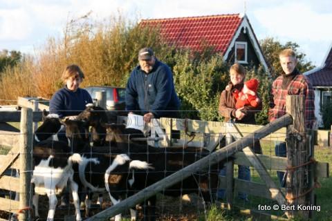 Dagelijks zijn Jan en Elly 'uit de west' even buiten Oudeschild te vinden bij hun geiten voor het melken. 'De bok staat verderop bij het fort De Schans' meldt Jan, die daar zijn schapen heeft lopen.
