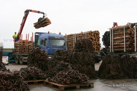 Dinsdagmorgen is in de werkhaven van Oudeschild gestart met de afvoer van het massaal gezaagde dennenhout uit het Texelse bos. Het vervoer naar België wordt uitgevoerd door het binnenvaartschip Hanzestad uit Kampen.