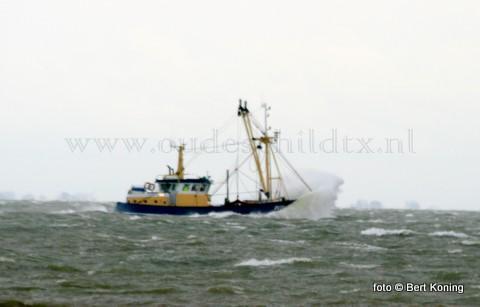 Gedurende de gehele week was het brieserig voor de kottervloot. Zo ook voor de garnalenkotter 'Baukje Elisabeth' van Jan-Simon de Haan uit Oudeschild.