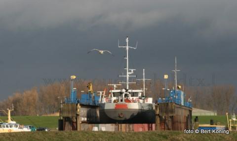 Na de HA 73 werd afgelopen week de 70 met lange MNO Anne Mino uit Rotterdam gedokt bij Visser in Oudeschild. Behalve het gebruikelijke 'knippen en scheren' worden er ook losluiken in het vrachtruim aangebracht en plaatst men een boegschroefunit in deze vrachtvaarder.