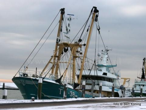 Zaterdag keerde de TX 38 van de firma Betsema uit Oudeschild terug in de thuishaven na een ombouw bij Maaskant Shipyard op de pulswingvisserij. De Branding is naast de TX36 de tweede van de Texelse vloot die de overstap heeft gemaakt van de combinatie van de Sumwing met de puls.