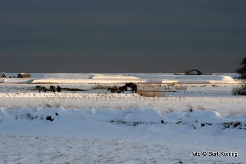 Het Hoge Berggebied en het fort De Schans is door de stuifsneeuw en de sneeuwluchten momenteel de ideale locatie voor het maken van Kerstkaart.
