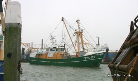 Sinds oudjaar ligt de TX 27 van de familie Hutjes uit Oudeschild afgemeerd bij het dok van Visse. De garnalenkotter Nova Cura ondergaat momenteel een revisie van de hulpmotor. Ook vindt er een aanpassing plaats aan de hydrauliek van de stuurmachine.