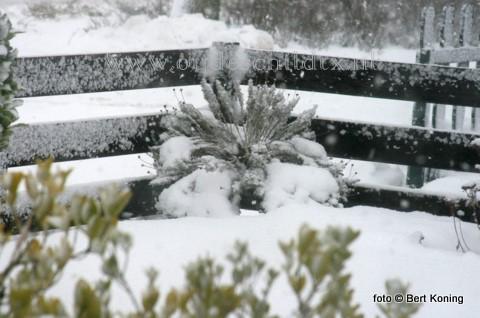 De voorspelling van zaterdag begon in de avond en zal zich met sneeuwjachten en gladheid bij een noordoost 8 ook gedurende de zondag handhaven, aldus het KNMI.