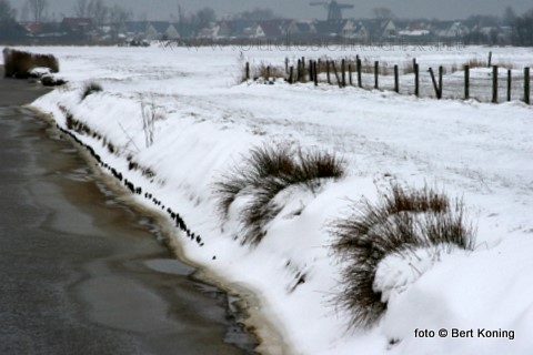 Nadat de sneeuw voor korte tijd weer weg was, raakte de gemeentelijk strooiwagens zaterdagmiddag en nacht opnieuw op pad om de gladheid te bestrijden. Hier een zicht op Oudeschild vanaf de Schansweg.