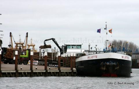 Na het verdwijnen van de ijsgang op het binnenwater werd afgelopen week weer een vervolg gemaakt met het afvoeren van het SBB-hout naar het Belgische Genk. Naast de 'Wiljette' uit Donten, waar havenmeester Foppe Visser een praatje met de schipper maakt, was het ook de 'Eragon' uit Werkendam die hiervoor de haven van Texel bezocht.