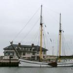 De 50 meter lange logger Zeemeeuw bezocht als éérste charter van dit jaar deze week weer de haven van Oudeschild. Het schip uit 1924 van Peter de Jong en Martine Schokker , met als thuishaven Harlingen, bied slaapplaats voor zo'n 32 personen.