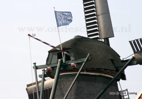 Na maanden van stilstand draait op de Oudeschild de molen De Traanroeier sinds kort weer regelmatig. De vangbalk (rem) op het bovenwiel in de kap van de molen raakte mede door weersgevoeligheid onklaar. Na het herstel heeft men inmiddels al weer graan gemalen op De Traanroeier uit 1904.
