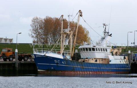 Begin deze week keerde de SC 41 van de firma M. Drijver uit Oosterend sinds juli 2009 weer terug in de thuishaven Oudeschild. De 24 meter lange 'Osterums' was met een nieuwe motor naar de Sylt vertrokken voor de garnalenvisserij. Deze week werd door de bemanning omgeschakelt op het twinriggen.