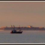 p1230952-wr-40-en-magleby-maersk