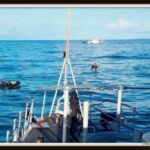 67d88810-152b-11ea-b934-02d1dbdc35d1 marine uk 165